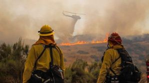 PUBLIKA WORLD: California, pârjolită de incendii de vegetaţie (VIDEO)