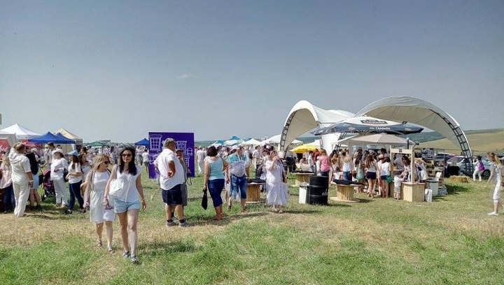 Mounted police show at Lavender Festival in Moldova (PHOTO)