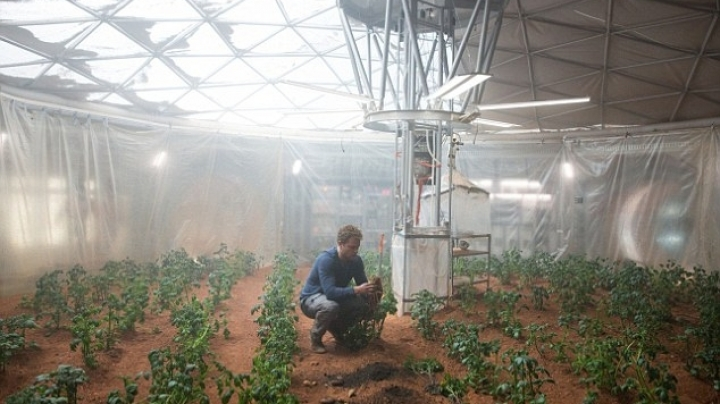 Vegetables grown in soil from Mars are found to be safe to eat