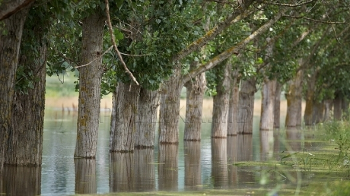 RISK OF FLOOD! Forecasters' warning regarding increase of water level in rivers and lakes