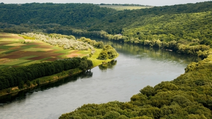 ALARMING! Moldova's main river has much less water than due