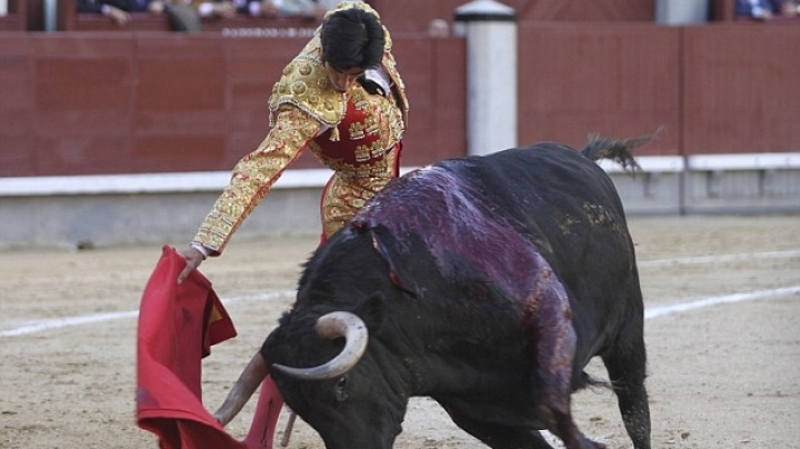 Top Spanish matador is gored to death by a bull, live on TV