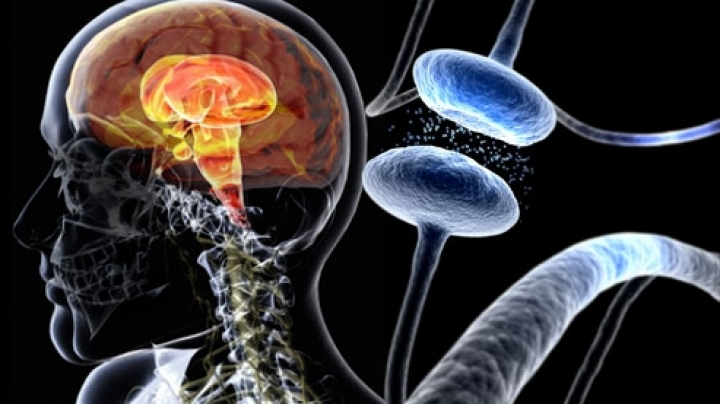 Parkinson's disease might be targeted by measuring genetic mutations