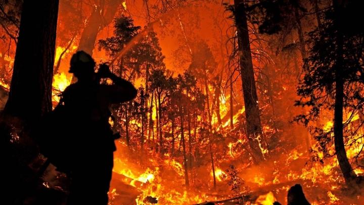 Burnt body found as wild fires run rampant in California