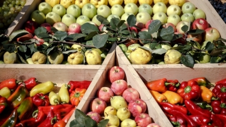 Moldovan fruit growers to get access to low-interest loans