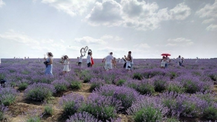 Moldovan farmer starts business with lavender