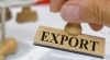 Moldovan exports falling and re-exports growing