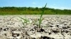 Yellow code of hydrological drought prolonged