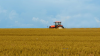 Moldovan farmers may submit applications to get subsidies till 31 October 2016