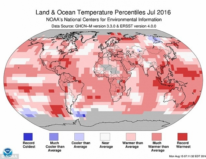 Scientists confirmed July as hottest ever month
