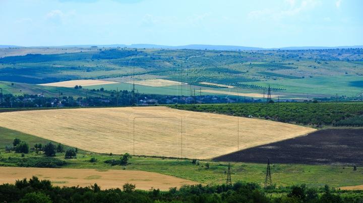 BREXIT AFTERMATH: Farmland gets cheaper in Britain