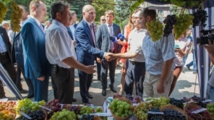 National Grape Festival. Pavel Filip: The sector is of key importance for economy (PHOTO)