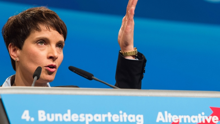 Populist Party from Germany stands for letting people 'arm themselves'