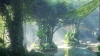 Latest megaproject in Dubai: Building a high-tech rainforest inside a hotel
