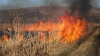 Vegetation fire in Telecentru sector. Fire spread over 10 hectares area