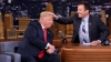Talk show anchor tries if Trump's hair is real (VIDEO)