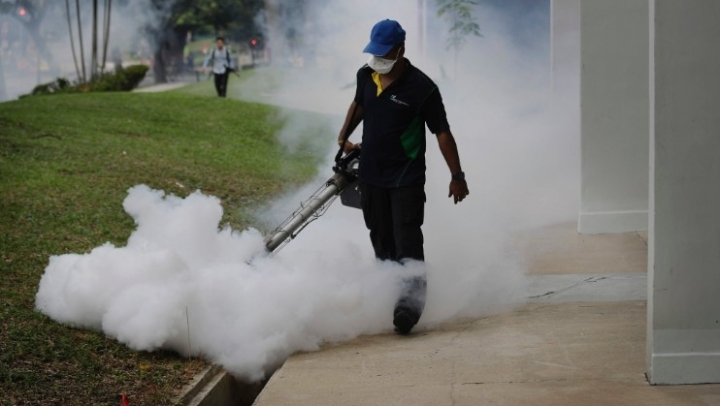 Singapore's Zika cases send warning signal to Asia
