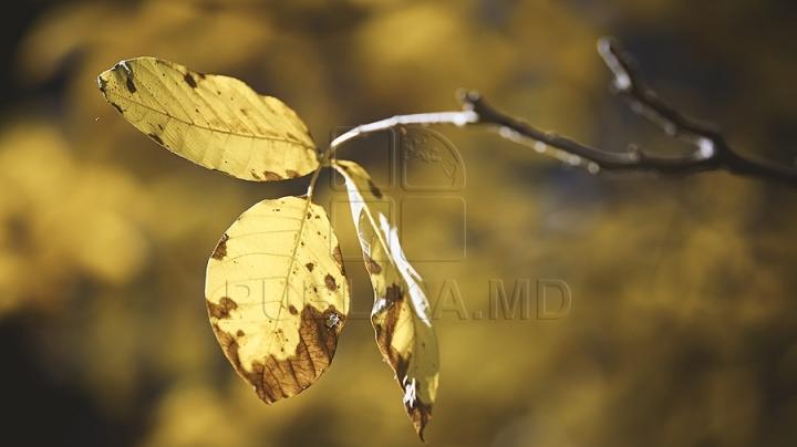 WEATHER FORECAST 5 SEPTEMBER 2016: Chilly autumn is felt already