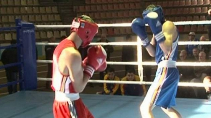 Independence Cup. International Boxing Tournament in north of Moldova
