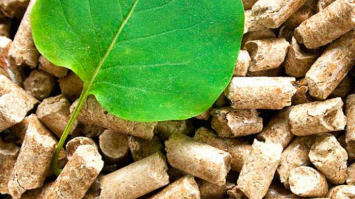 Moldova to get unique training center for biomass thermal plant operators