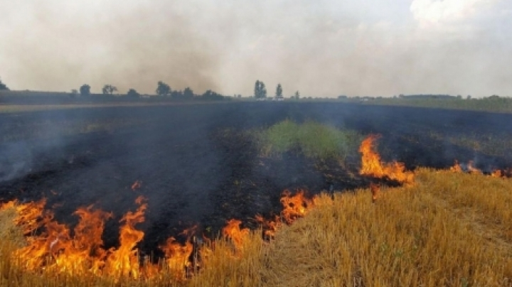 Forecasters have issue Yellow Code of fire