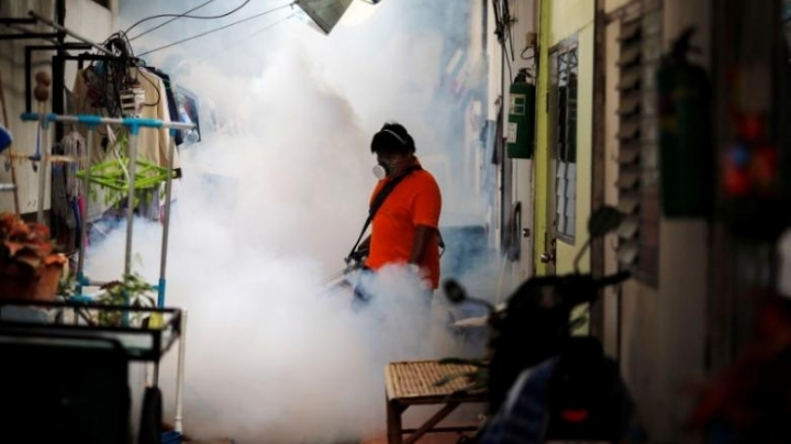 Thailand investigates four cases of suspected Zika-linked microcephaly