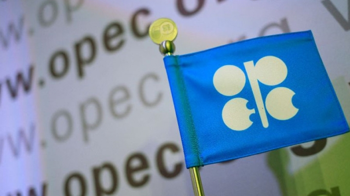 OPEC countries to lower output, shale firms cheer