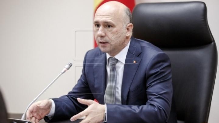 Prime Minister calls for urgent measures to prevent swine fever from entering Moldova