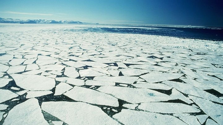 Study:Arctic sea ice shrinks to second lowest level ever recorded