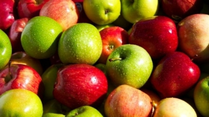 Apple festival: Most delicious and beautiful apples in Soroca town