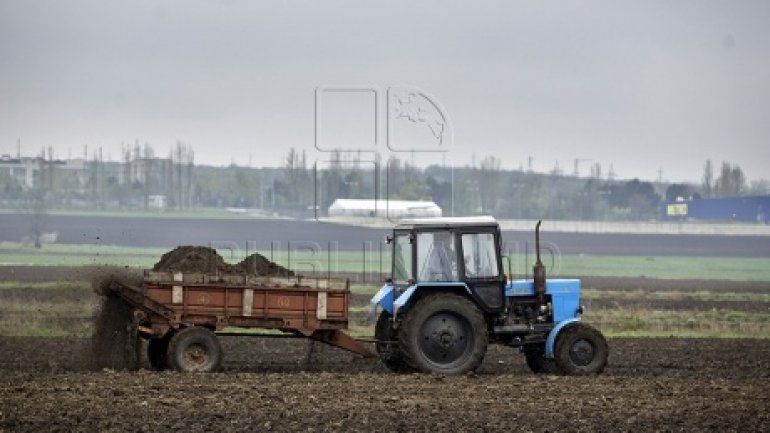 Chisinau Government to pay for losses of Dubasari district farmers