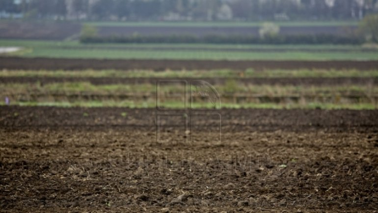 Good news for farmers: Deadline for grant application was extended until October 31