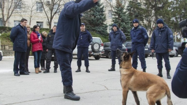 Moldova's Border Police gets two dogs from Latvian counterparts