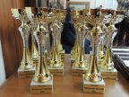 Health Ministry awards best doctors and journalists