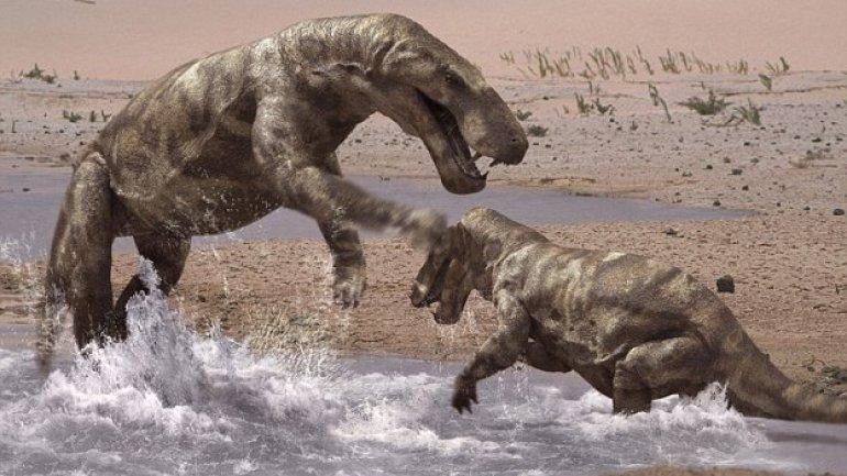World's oldest cancer case: Tumor found in mouth of Paleozoic predator