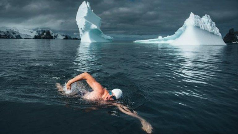 Briton swims Antarctic in campaign for three marine sanctuaries