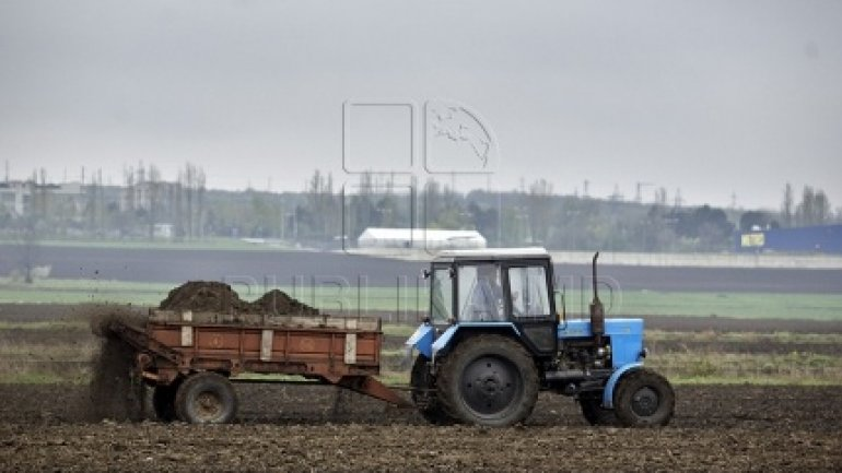 Farmers will receive subventions for worked land and livestock