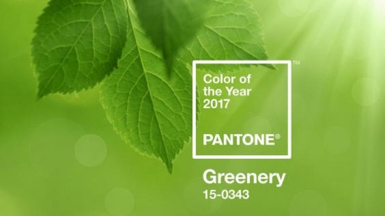 Pantone colour of year announced and it's a shade of green