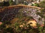 Colombia considers national ban on bullfighting