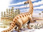 Ancient proteins discovered inside dinosaur bone