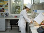 Moldovan authorities prepared to prevent swine fever and other animal diseases