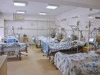 Generous snowfalls make victims: 60 people hospitalized