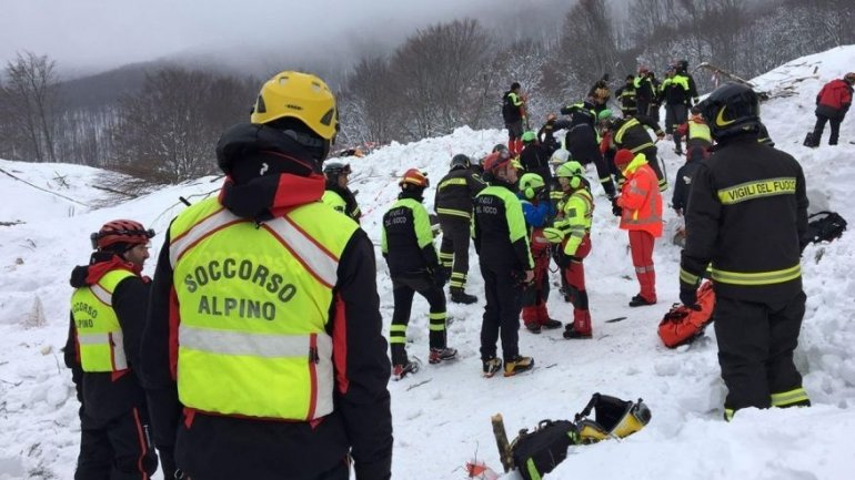 Italy avalanche: Three puppies found alive, giving hope for more survivors (VIDEO)