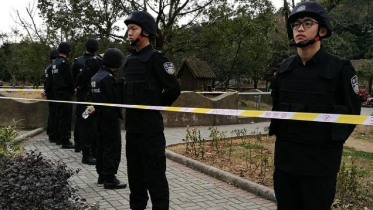 Visitor mauled to death by tiger in Ningbo zoo in China