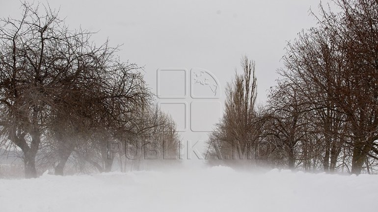WEATHER FORECAST FOR FOLLOWING DAYS: Snowfall with intensifications