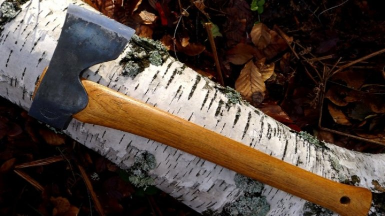 SCARY! Grandpa hits 13-year-old with axe