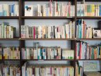Moldovan top court rules on free of charge textbooks for pupils