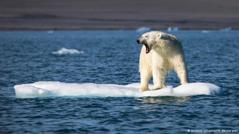 Sea ice at record low in Arctic and Antarctic