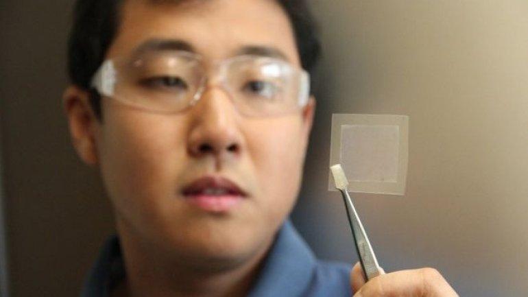 Australian scientists create graphene using soybean oil