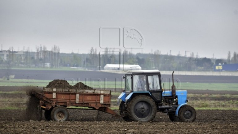 Moldova will get grant to develop conservation agriculture